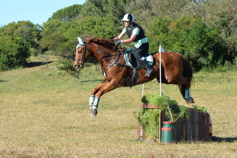 马和车手跳跃 免版税库存图片