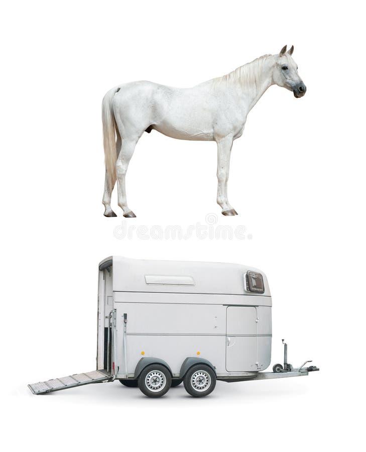马和马拖车 库存图片