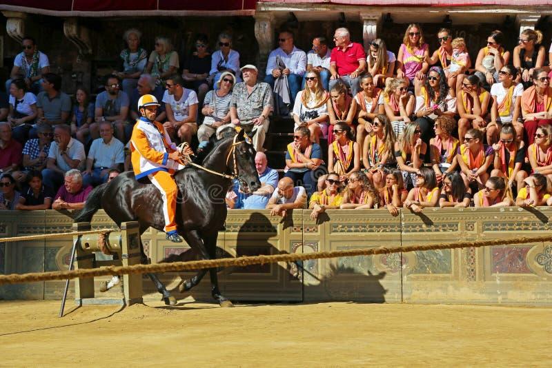 马和骑师在锡耶纳,意大利Palio  免版税库存图片