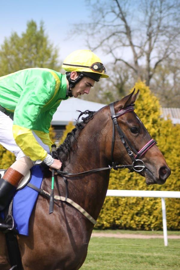 马和骑师 图库摄影