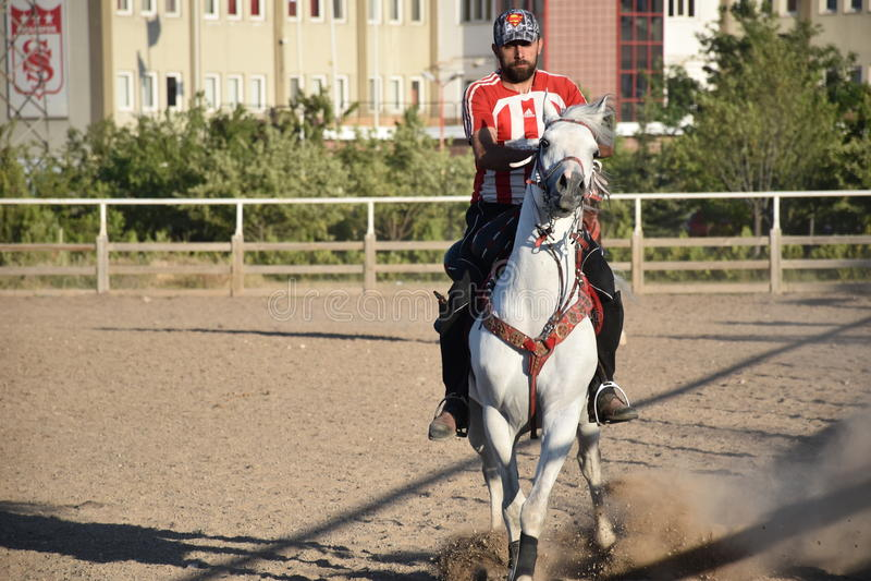 马和骑师 库存图片