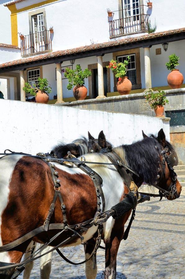 马在中世纪市Obidos在葡萄牙 免版税库存图片