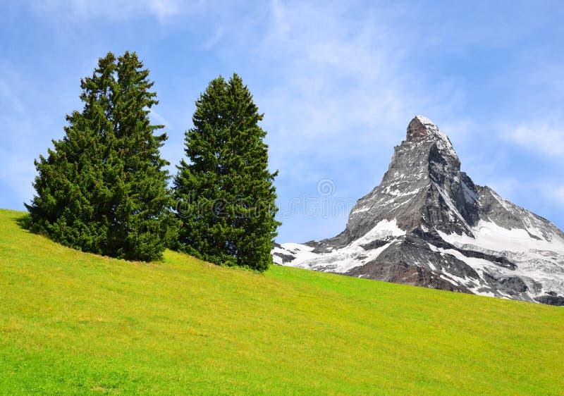 马塔角在叶绿泥石阿尔卑斯,瑞士 免版税图库摄影