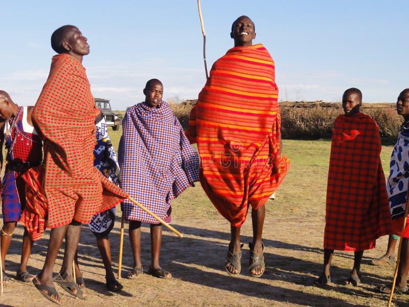 马塞人玛拉传统舞蹈 库存照片