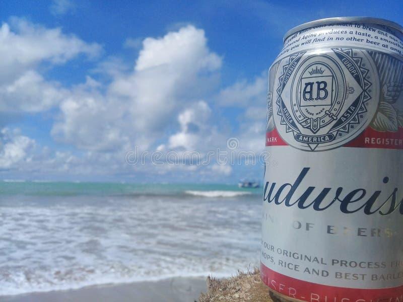 马塞约,AL,巴西- 2019年5月12日:后边百威冰镇啤酒和美丽的天空和海 免版税库存图片