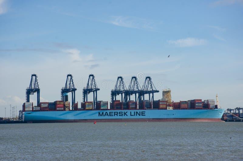马士基线在口岸的集装箱船在有起重机的Flexistowe在背景中 图库摄影