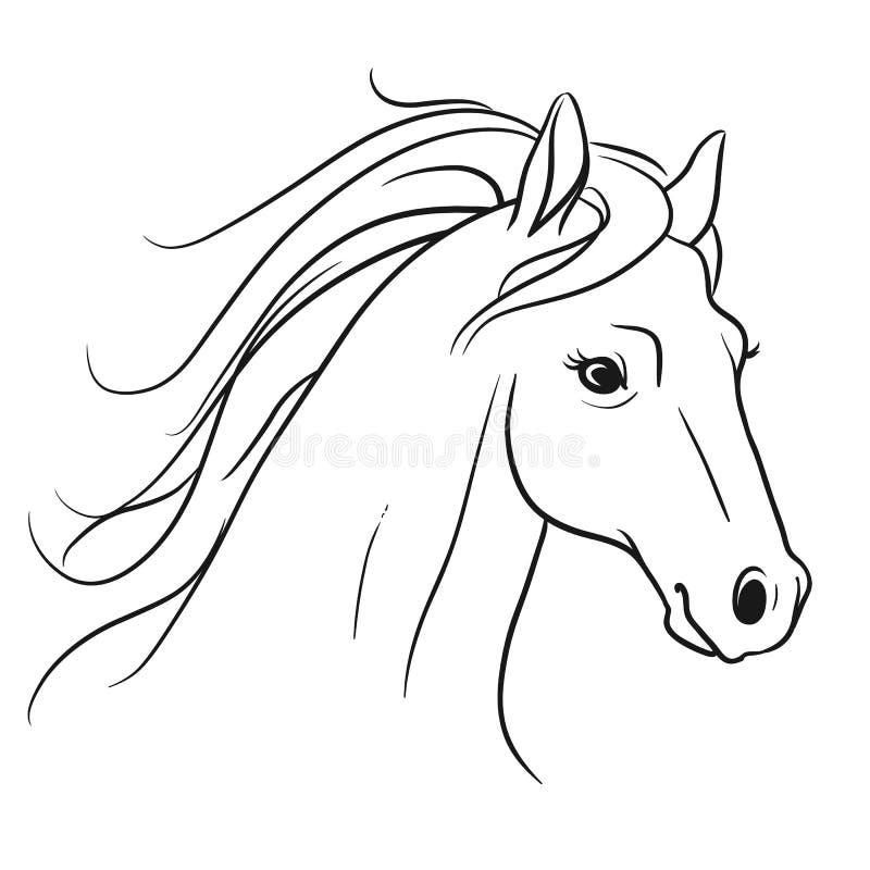 马头有流动的鬃毛画象侧视图,钢笔画的猪圈 皇族释放例证