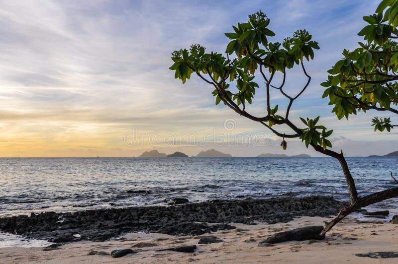 从马娜日落的附近的海岛在斐济靠岸 库存照片