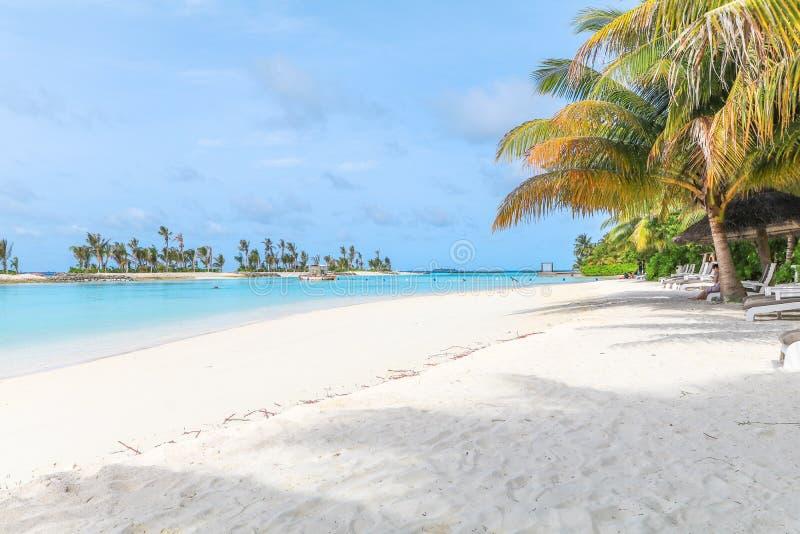马尔代夫、美丽的绿松石水域和白色沙滩的令人惊讶的海岛有天空蔚蓝背景为假日 库存图片