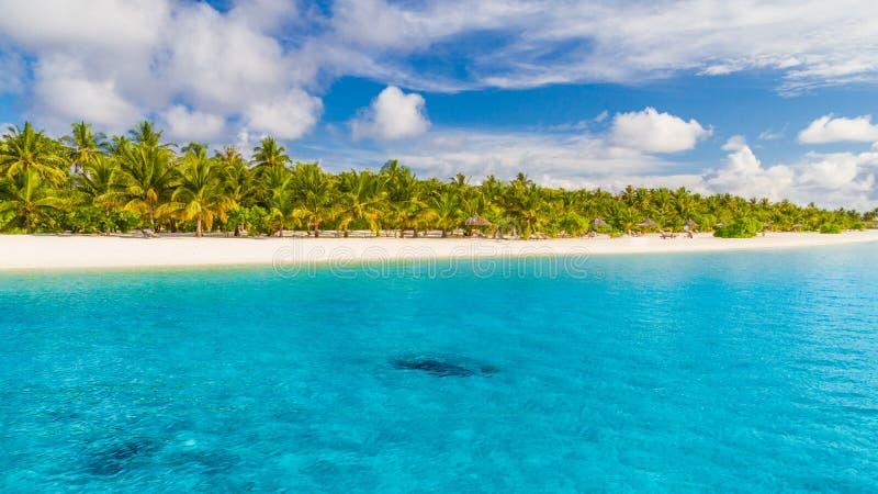马尔代夫海岛海滩背景 假期和假日与棕榈树和热带海岛靠岸 库存照片