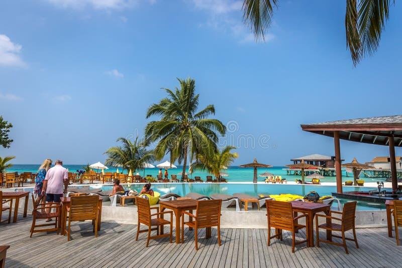 马尔代夫, 2018年2月8日-享受一蓝天天的游人在一个美丽的热带海岛在马尔代夫,在Cestara旅馆里面  库存图片