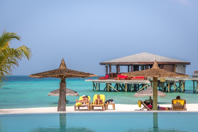 马尔代夫, 2018年2月8日-享受一蓝天天的游人在一个美丽的热带海岛在马尔代夫,在Cestara旅馆里面  免版税库存照片