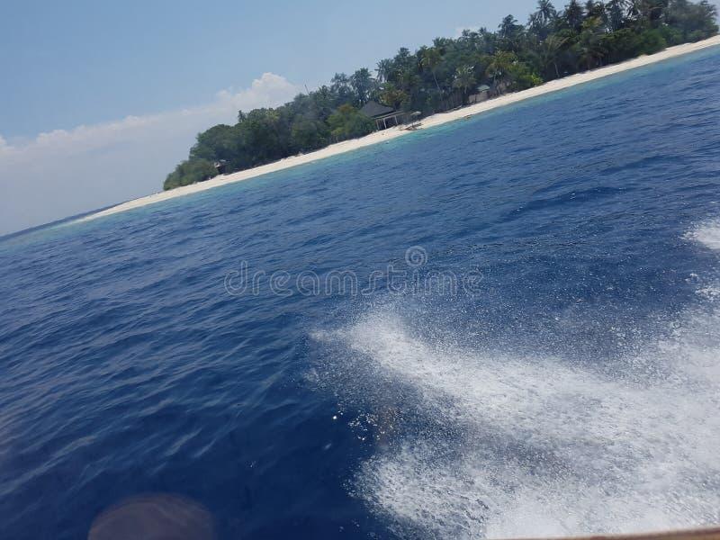 马尔代夫海洋 库存照片