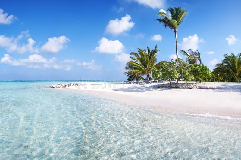 马尔代夫码头 免版税库存图片