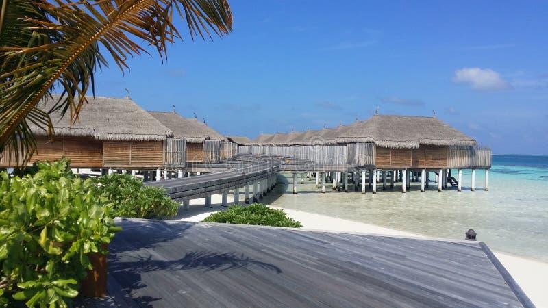 马尔代夫蜜月水别墅 免版税库存照片