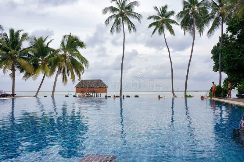 马尔代夫- 2013年1月27日:海边由热带海洋海滩的水池风景风景与可可椰子树 田园诗场面 库存照片