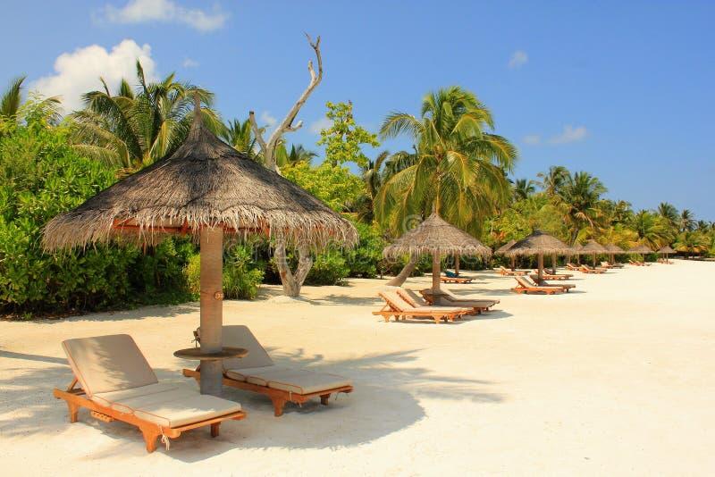 马尔代夫beach3 库存照片