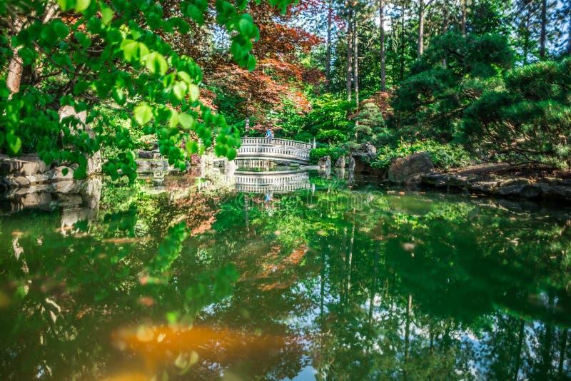 马尼托公园的美丽的日本庭院在斯波肯,Washingon 库存照片
