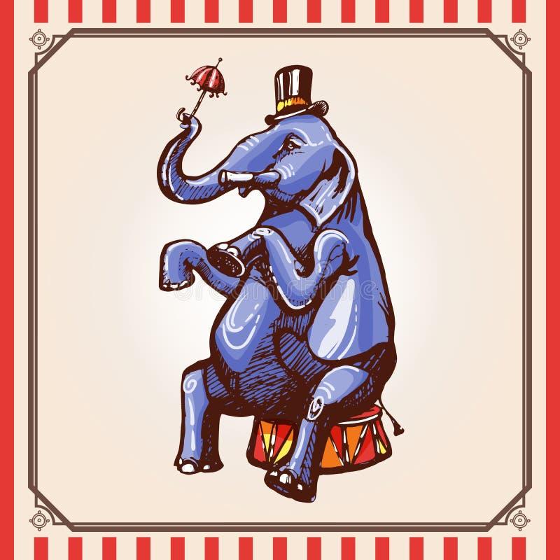 马戏大象 库存例证