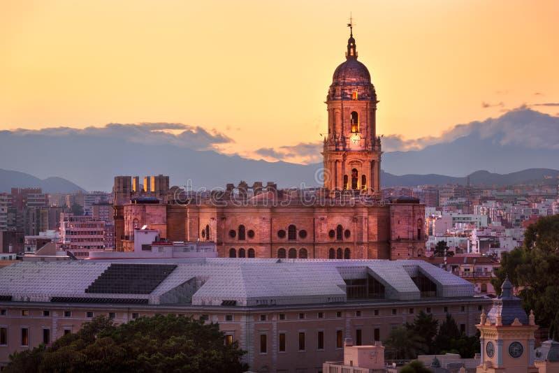 马拉加大教堂在晚上,马拉加, Andalusi鸟瞰图  免版税库存照片