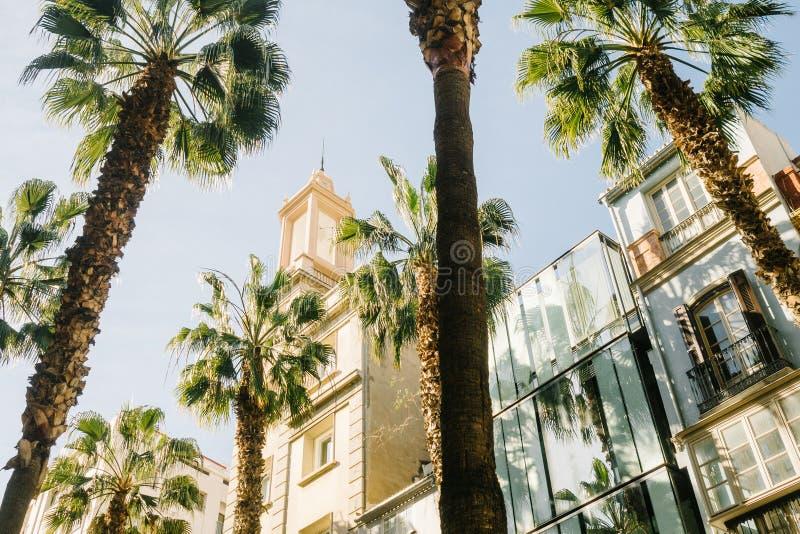 马拉加,安大路西亚的古城中心在西班牙 免版税库存照片