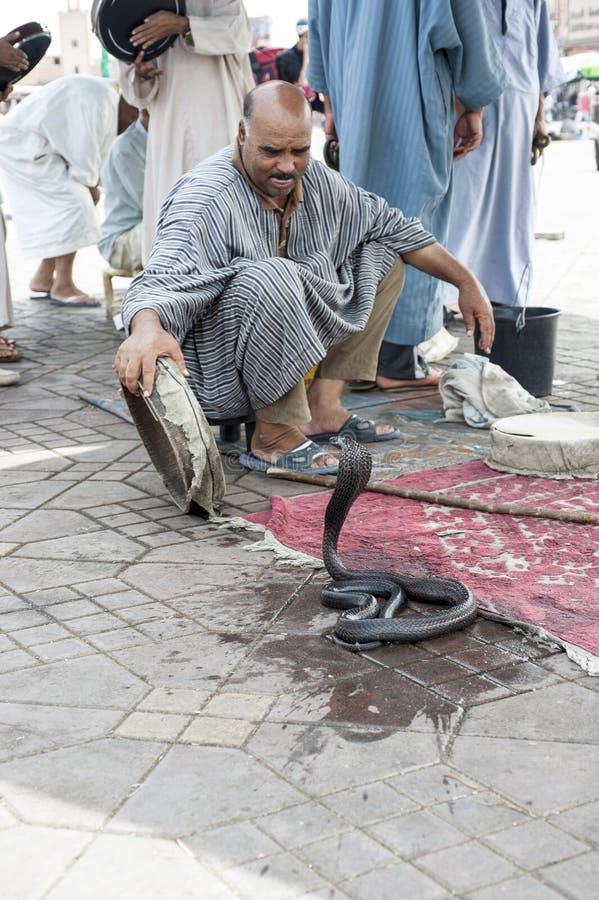 耍蛇者在马拉喀什,摩洛哥 免版税库存图片