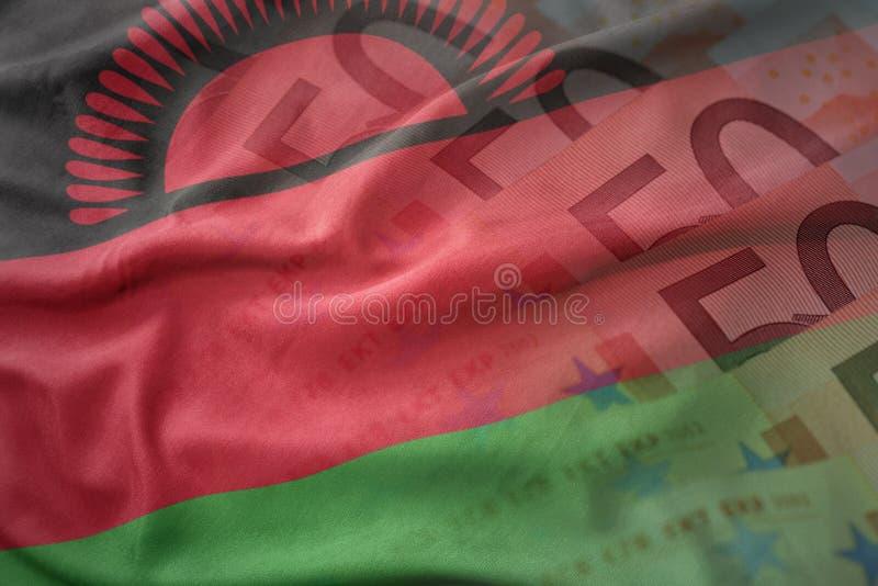 马拉维的五颜六色的挥动的国旗欧元金钱钞票背景的 向量例证