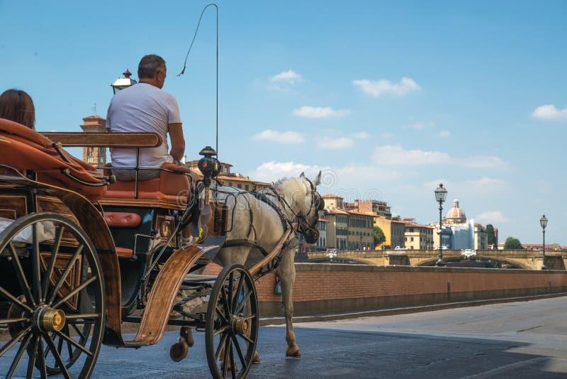 马支架佛罗伦萨意大利 库存图片