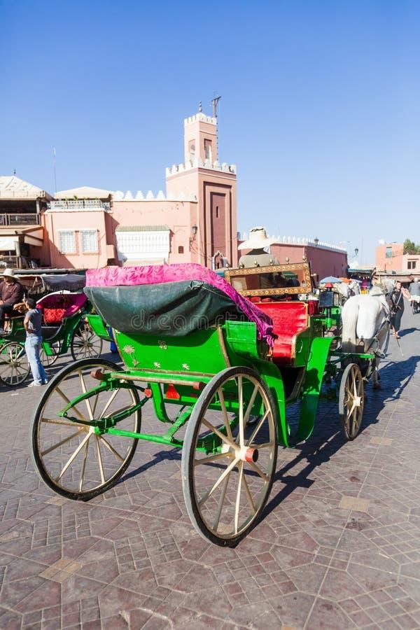 马支架在马拉喀什 免版税库存图片