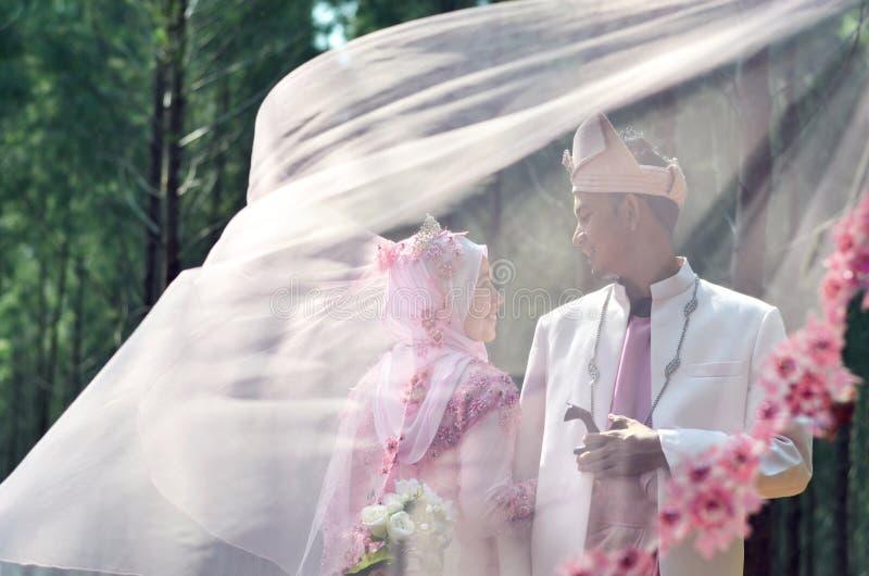 马来的爱恋的夫妇新娘和新郎的创造性的照片写真 免版税库存图片