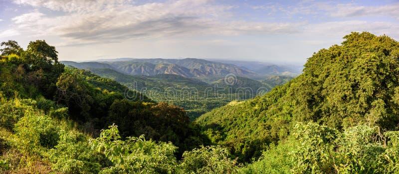 马果国家公园,埃塞俄比亚 免版税图库摄影