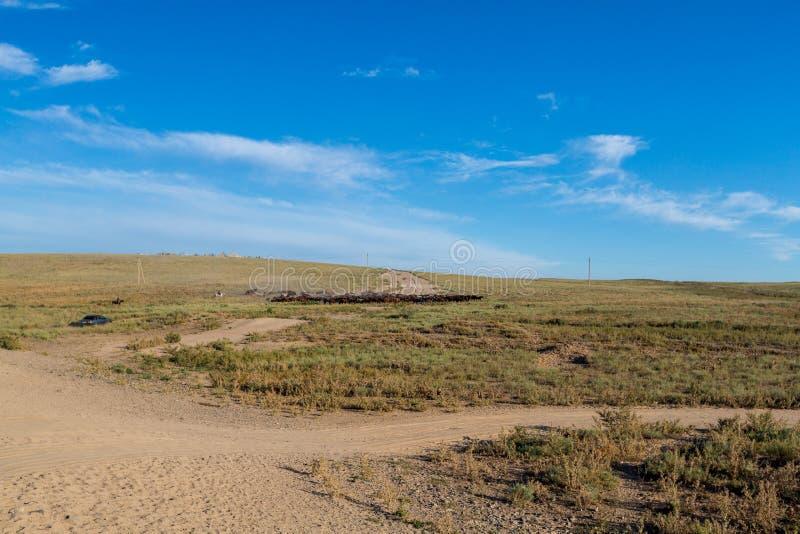 马牧群与在马背上放牛者的在哈萨克斯坦干草原  库存照片