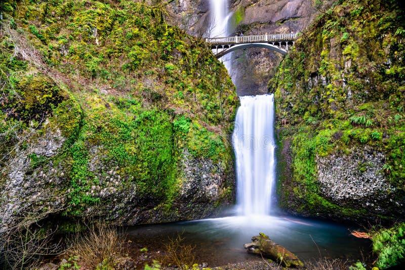 马特诺玛瀑布在哥伦比亚河峡谷,美国 免版税图库摄影