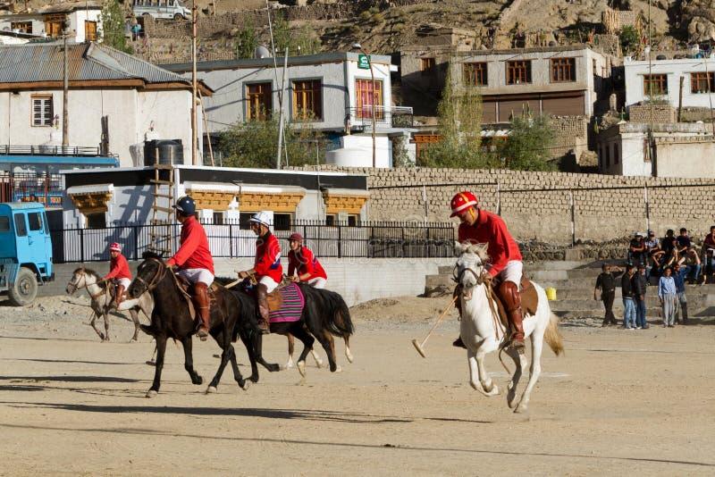 马球在喜马拉雅山 免版税图库摄影
