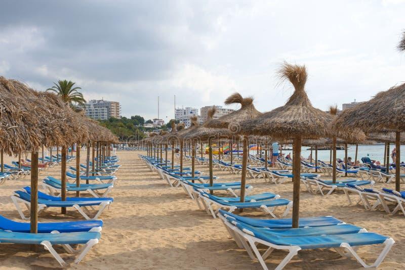 马略卡传统盖的伞和蓝色sunbeds在Magaluf手段沙滩  r 免版税图库摄影