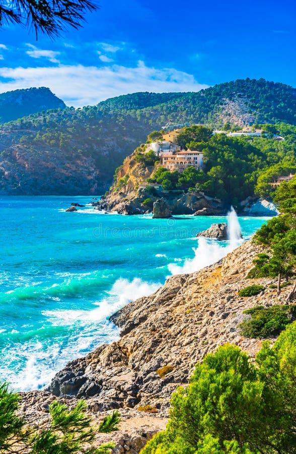 马略卡海岛,阵营de 3月美好的海岸风景  免版税库存图片
