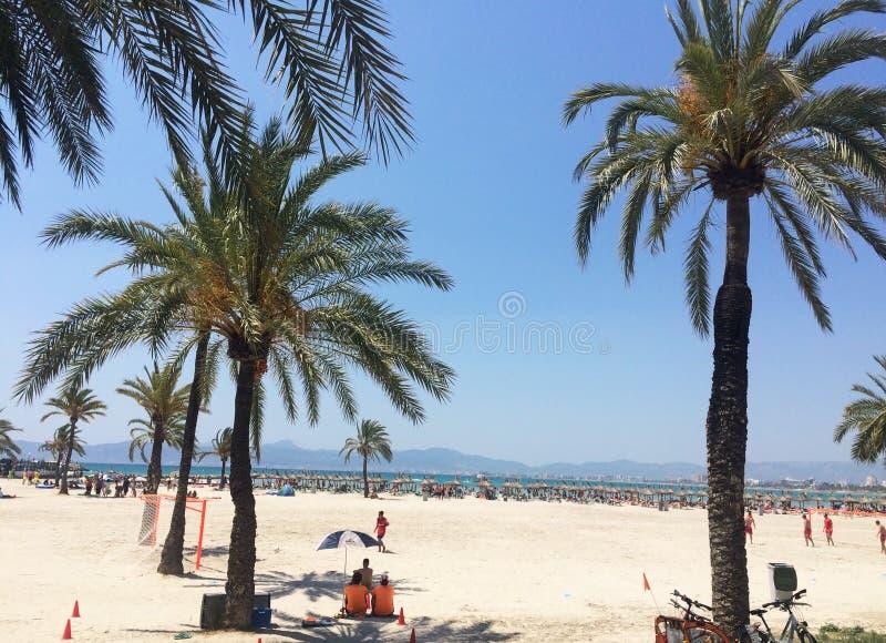 马略卡海滩 库存照片