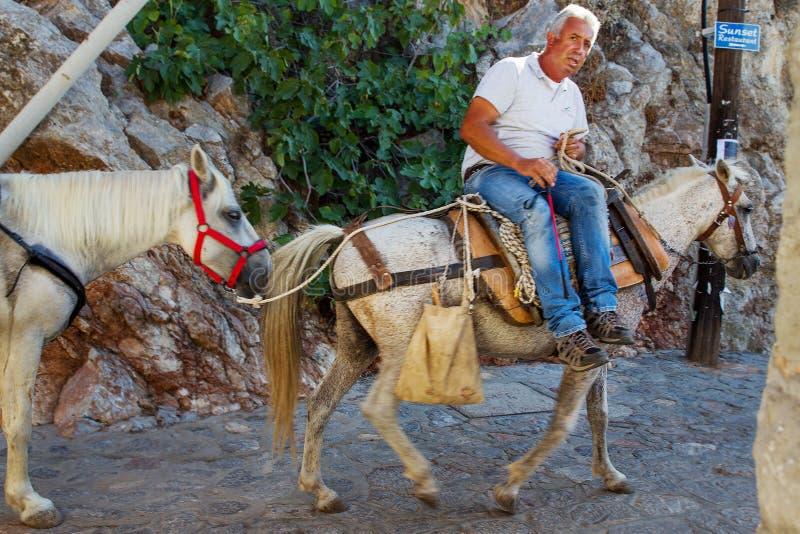 马的人在九头蛇 免版税库存照片