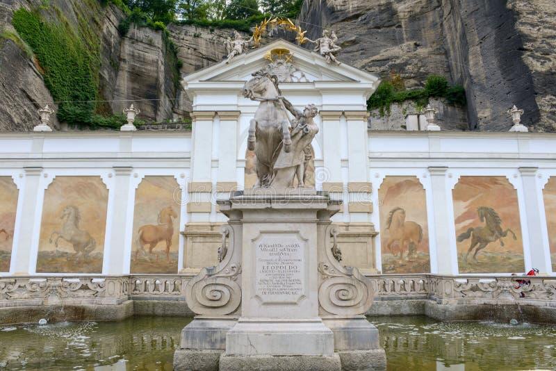 马的浴在奥地利的萨尔茨堡 免版税图库摄影