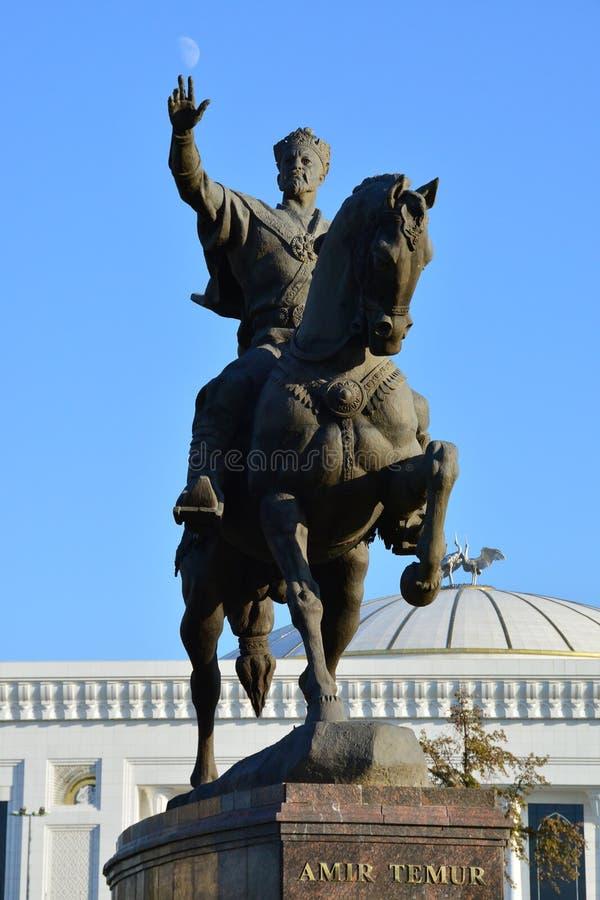 马的贵族Temur 库存照片