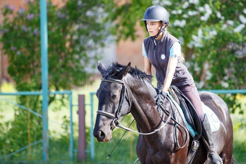 马的年轻车手女孩在驯马竞争 库存图片