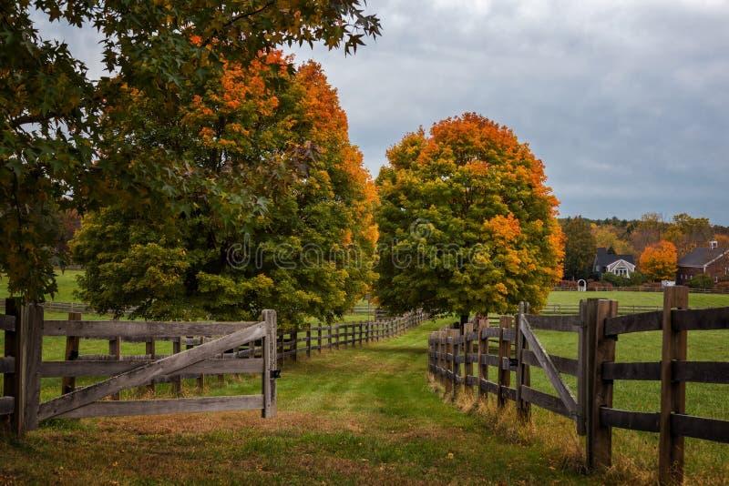 马萨诸塞州秋风 库存照片