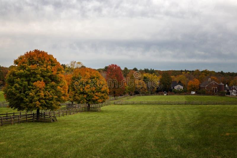 马萨诸塞州秋风 免版税图库摄影
