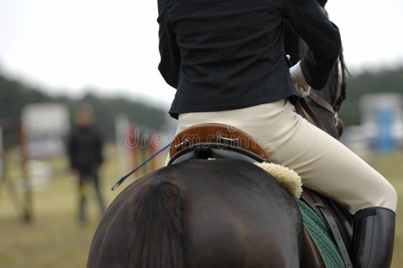 马跳 免版税库存图片
