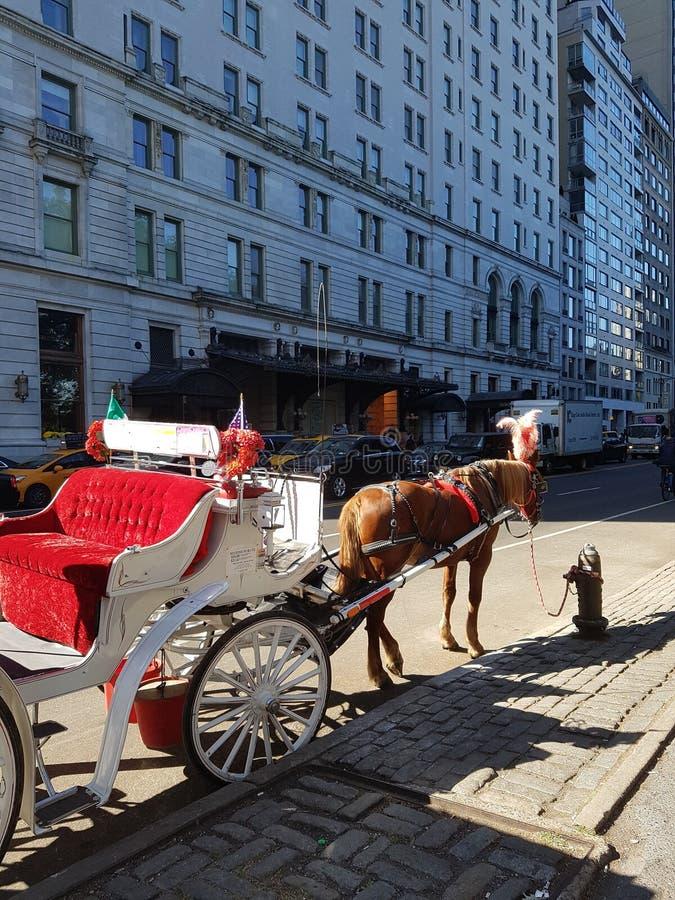 马车和手推车在中央公园NYC 免版税库存照片
