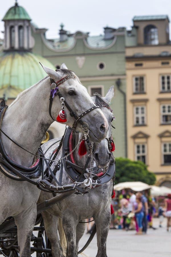马车和手推车在市场上在克拉科夫,波兰 免版税库存照片