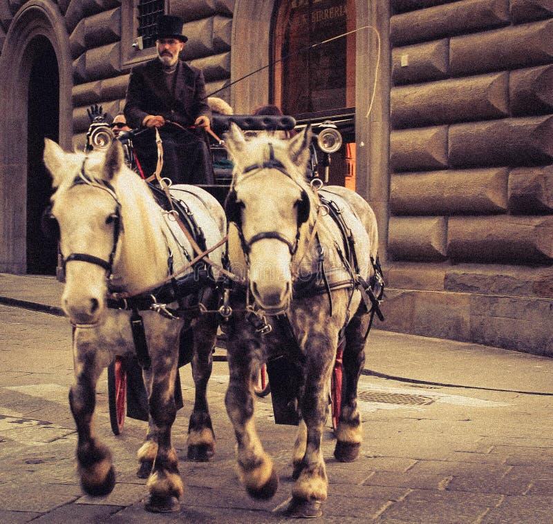 马车夫在佛罗伦萨 库存图片