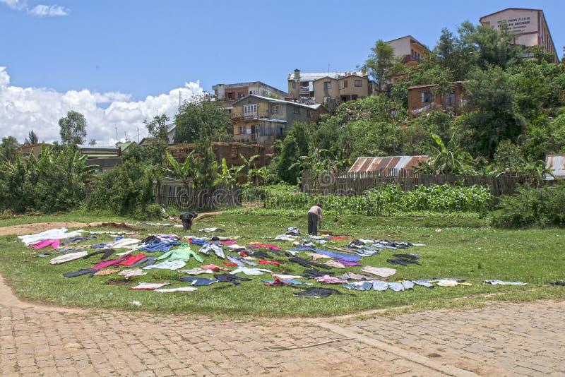 马达加斯加 安齐拉贝 库存照片