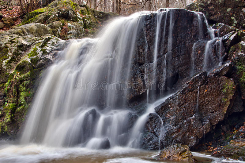 马里兰森林瀑布 图库摄影