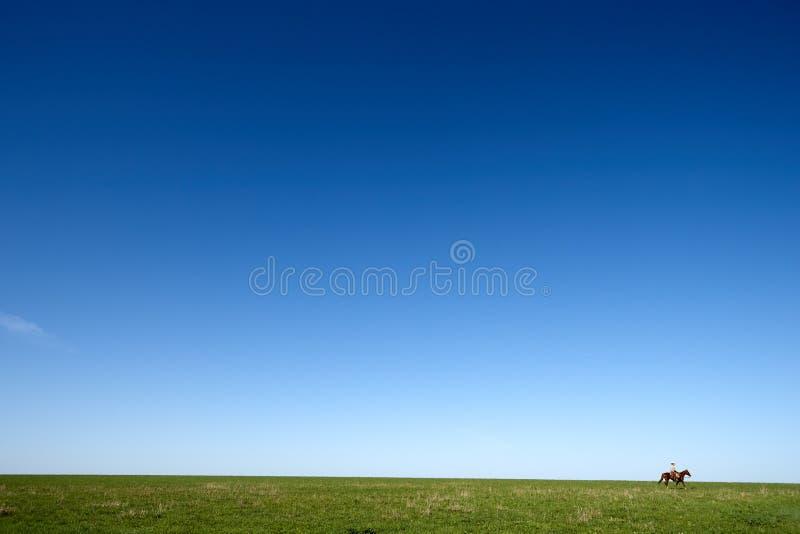 马骑术的牛仔通过绿色草甸 免版税图库摄影